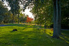 Ruchill Park in Glasgow - 29 September 2013