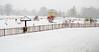 Snow - Rouken Glen Park