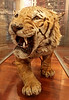 Tiger Exhibit - Kelvingrove Museum - 17 May 2012