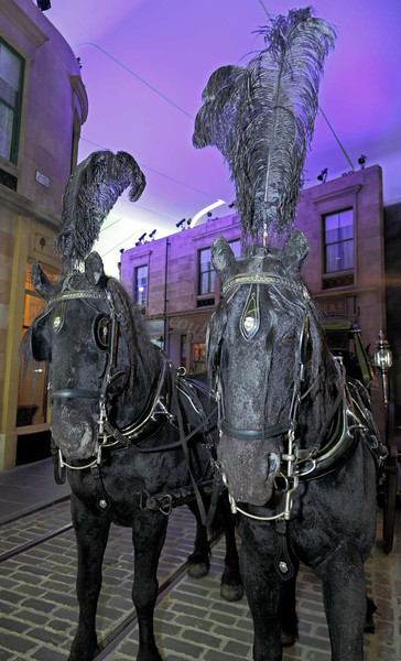 Hearse Horses - Riverside Museum - 17 June 2012