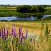 NW - Prairielands - 02
