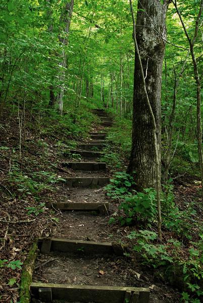 SE - Hiking Trail - 01
