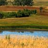 NW - Prairielands - 01