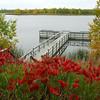 Lake Bronson - 13