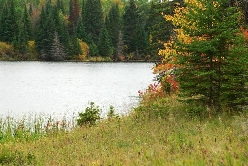 Hayes Lake - 04