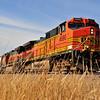 Train - 03