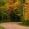 Fall road - Banning State Park