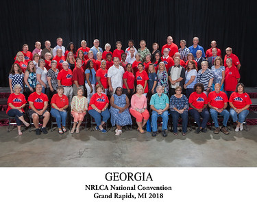 Georgia State Photo Titled