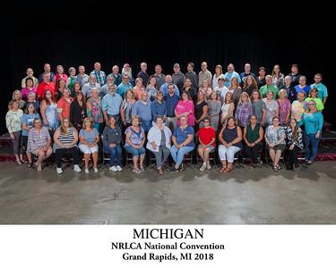 Michigan State Photo Titled