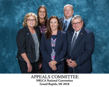 Appeals Committee - Titled 115043