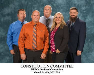 111 Constitution Committee-Titled