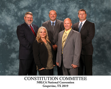 111 Constitution Committee Titled