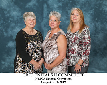 111 Credentials II Committee Titled