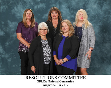 111 Resolutions Committee Titled