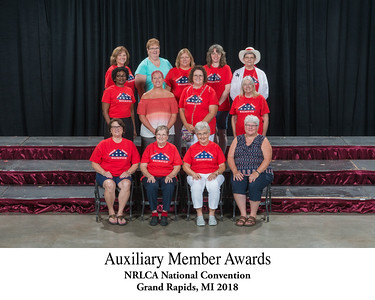 Auxiliary Member Awards Titled
