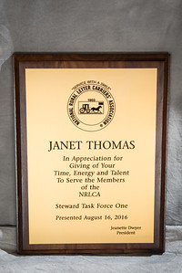 Janet Thomas Steward Task Force One Plaque 105533