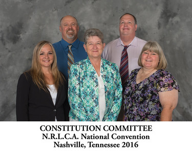 111 Constitution Committee - Titled - 083903
