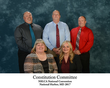 111 Constitution Committee - Titled 172452