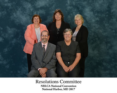 111 Resolutions Committee - Titled 181634