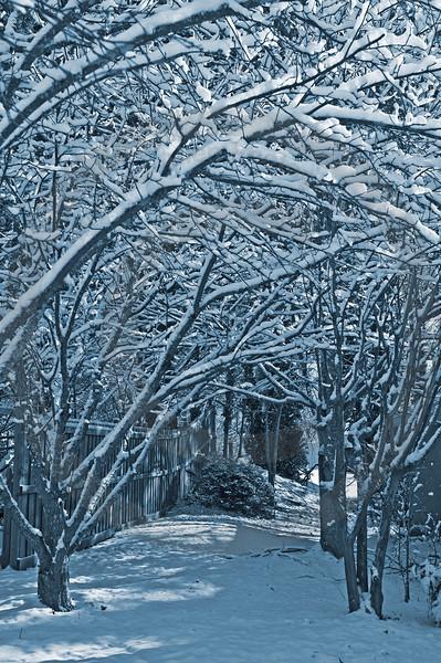 Atlanta in the Snow