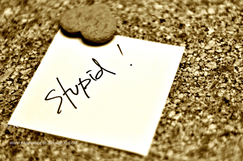 Stupid<br /> Mon. July 30, 2012 (day 219)<br /> <br /> Why the heck do people fight over stupid stuff?