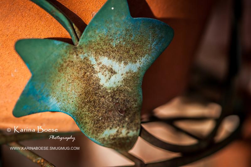 Rusty Leaf<br /> Thu. April 19, 2012 (day 145)