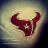Go Texans!<br /> Sun. Oct.21, 2012 (day 235)<br /> <br /> I'm wearing my pink Texans shirt today... and It's 6-1 baby!!!