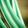 Green Hose, Jose!<br /> Wed. April 18, 2012 (day 144)