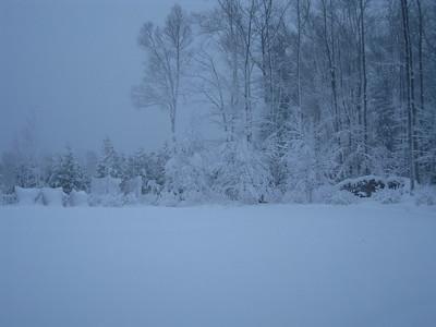 20091209_blizzard_76
