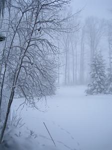 20091209_blizzard_72