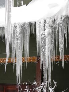 20091209_blizzard_011-6