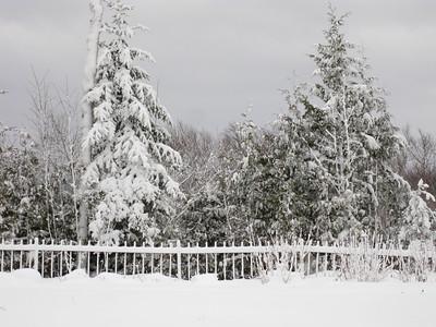 20091209_blizzard_011-10