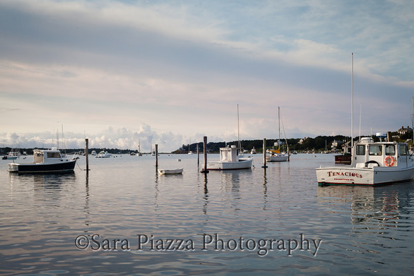 Edgartown News, Sara Piazza Photography, Edgartown Photographer, Martha's Vineyard Wedding and Portrait Photographer