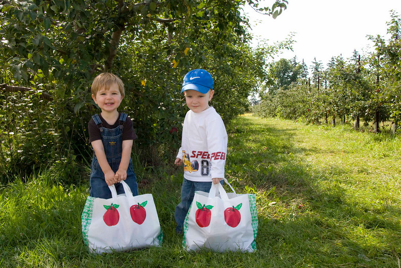 Bags full of apples are heavy!