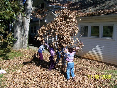 Playing in the Leaves - 2008