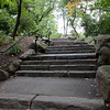 Central Park. I climbed these stairs on my walk over to the hospital.