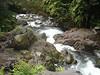 River leading to Trinity Falls.