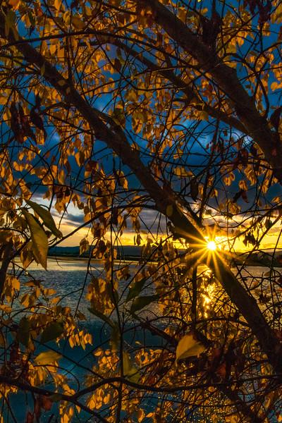 Sundown blue and gold