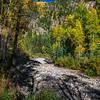 Lime Creek, dry