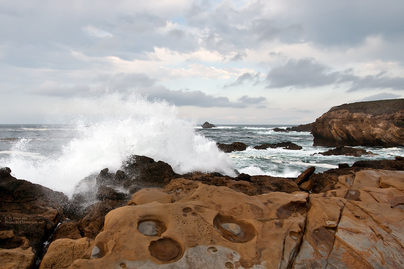 Point Lobos Waves