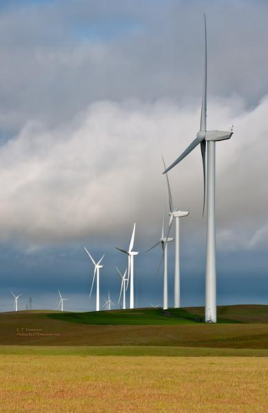 Solano Co. Wind Turbines