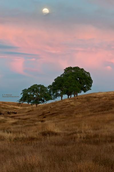 Deer Creek Sunset