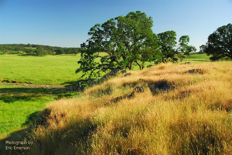 Deer Creek Hills