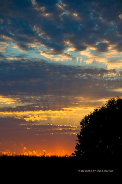 Sacramento Valley Sunset