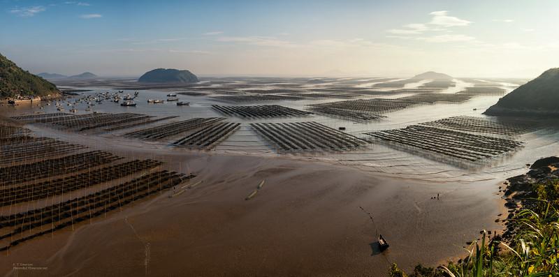 Coastal Scenes in Xia Pu, Fujian Province
