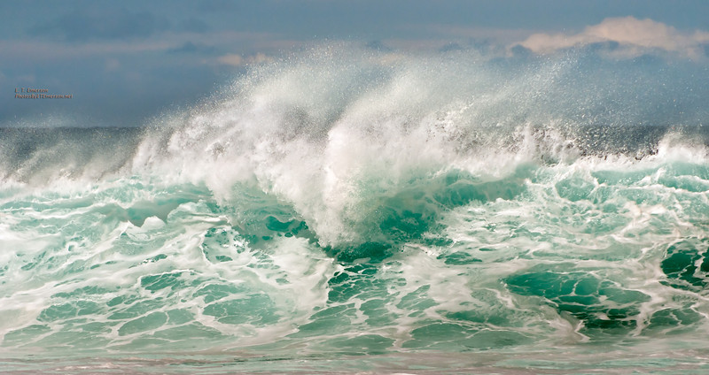 Wave at La Perouse Bay, Maui