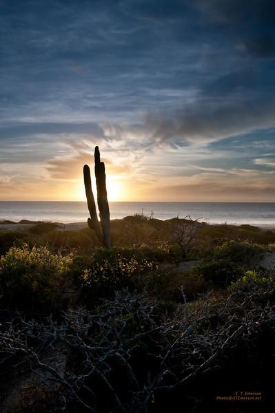 Sunset at Cerritos