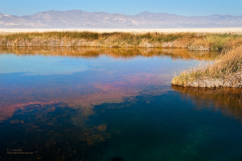 Black Rock Desert Pond