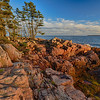 Acadia Coastline near Ship Harbor