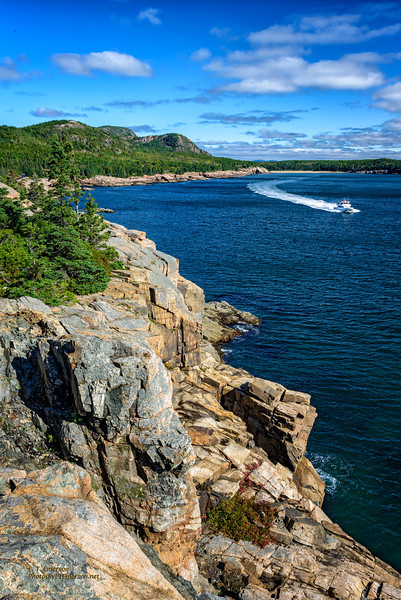 Newport Cove on Acadia's Eastern Shoreline